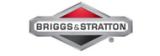 Briggs&Stratton /США/